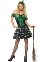Adult Fever Wicked Witch Light Up Costume Thumbnail