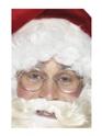 Wire Framed Santa Specs Thumbnail