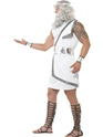 Adult Zeus Costume  - Side View - Thumbnail