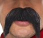 Big Bushy Gringo Tash (39284)