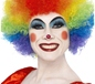 Crazy Clown Rainbow Wig (42088)