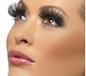Long Black Eyelashes (32330)