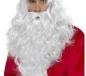 Santa Long Wig and Beard (38317)