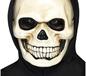 Adult Skull Mask (29664)