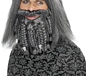 Terror of the Sea Pirate Wig and Beard Set (43284)