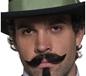 Western Gambler Moustache (31129)