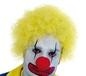 Adult Yellow Clown Wig (FS2745)